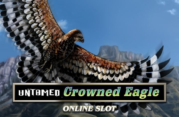 Millionaire with Untamed: Crowned Eagle slot
